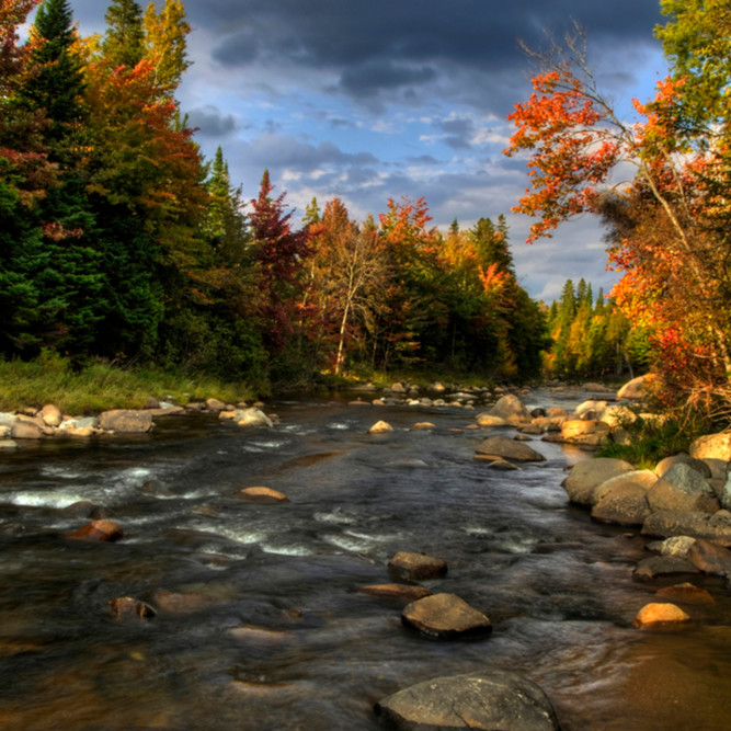 West branch of the ausable vhufaz