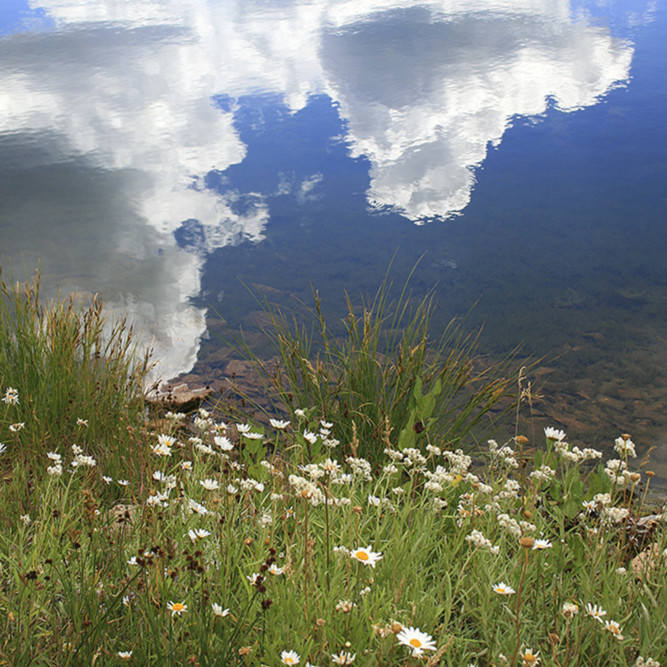 Lake reflection qzriap