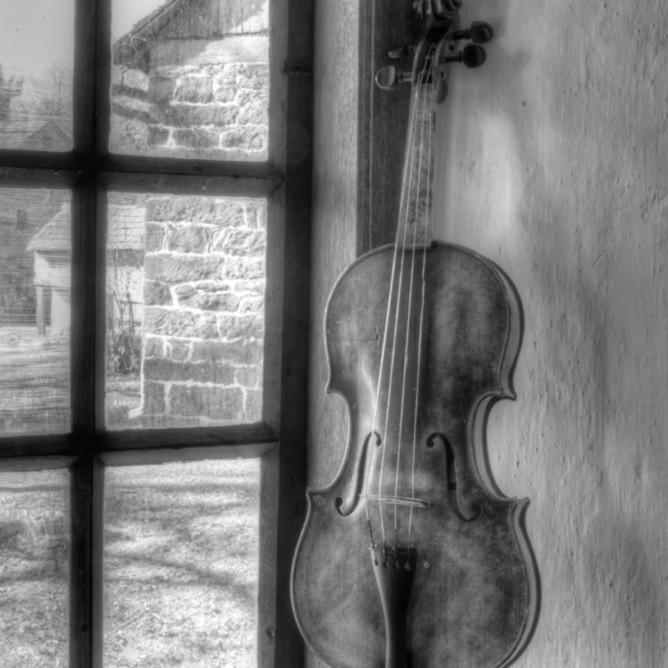 Violin still life ii wcvdq1