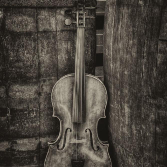 Violin still life i arhiyl