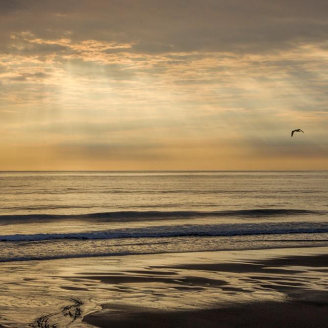 Cape morning wlbgkx