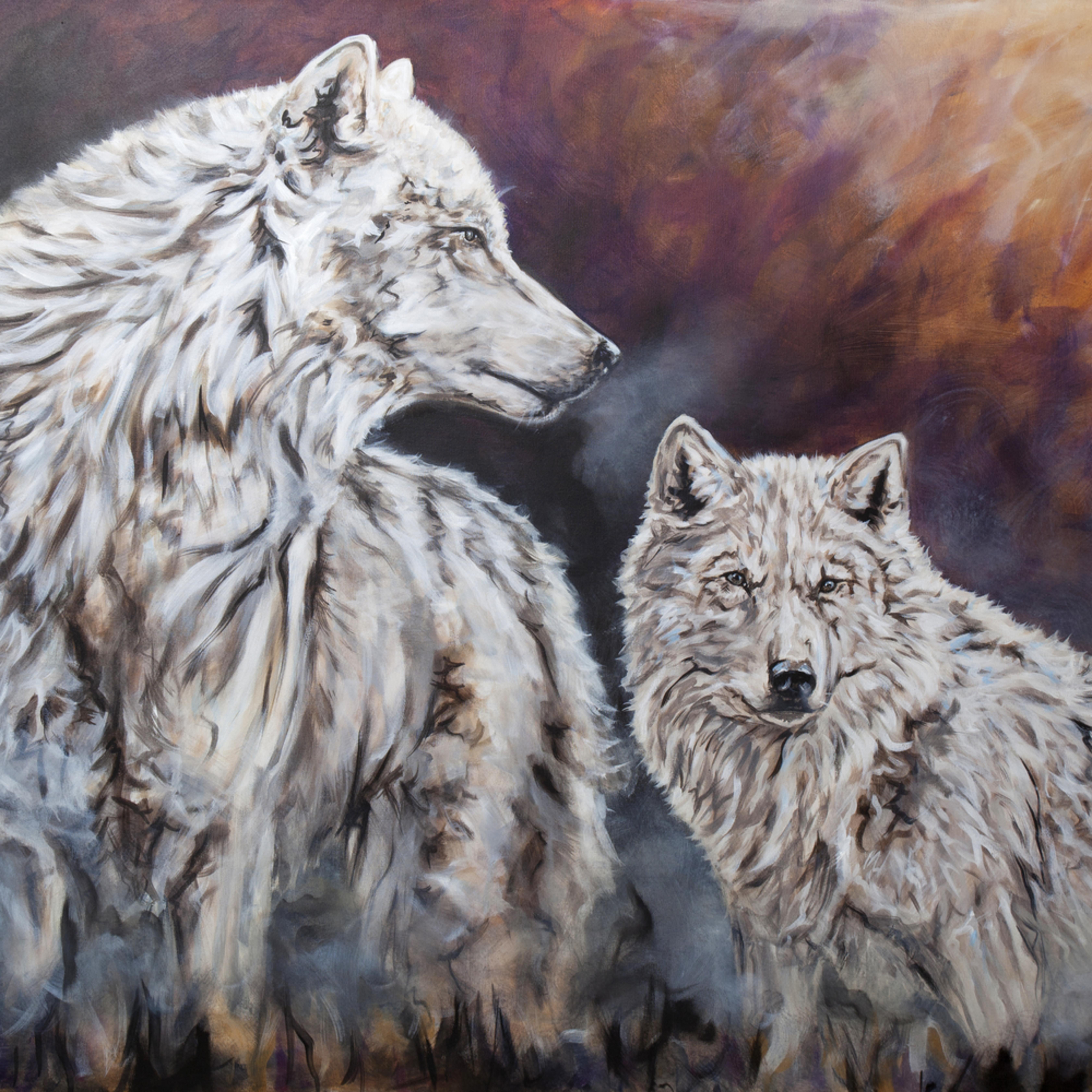 230 arctic pride hvehc6