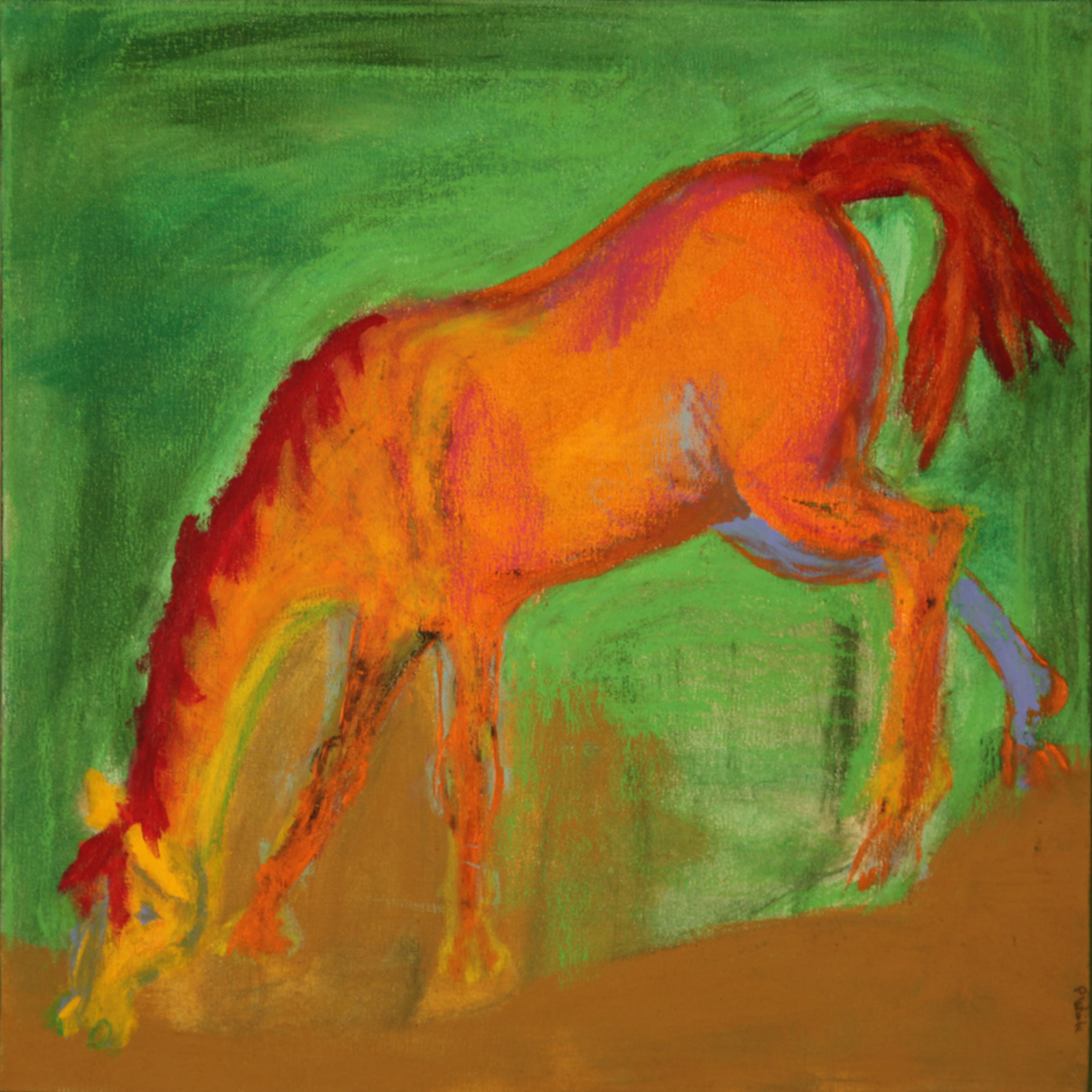 Pam white horse12 motelf