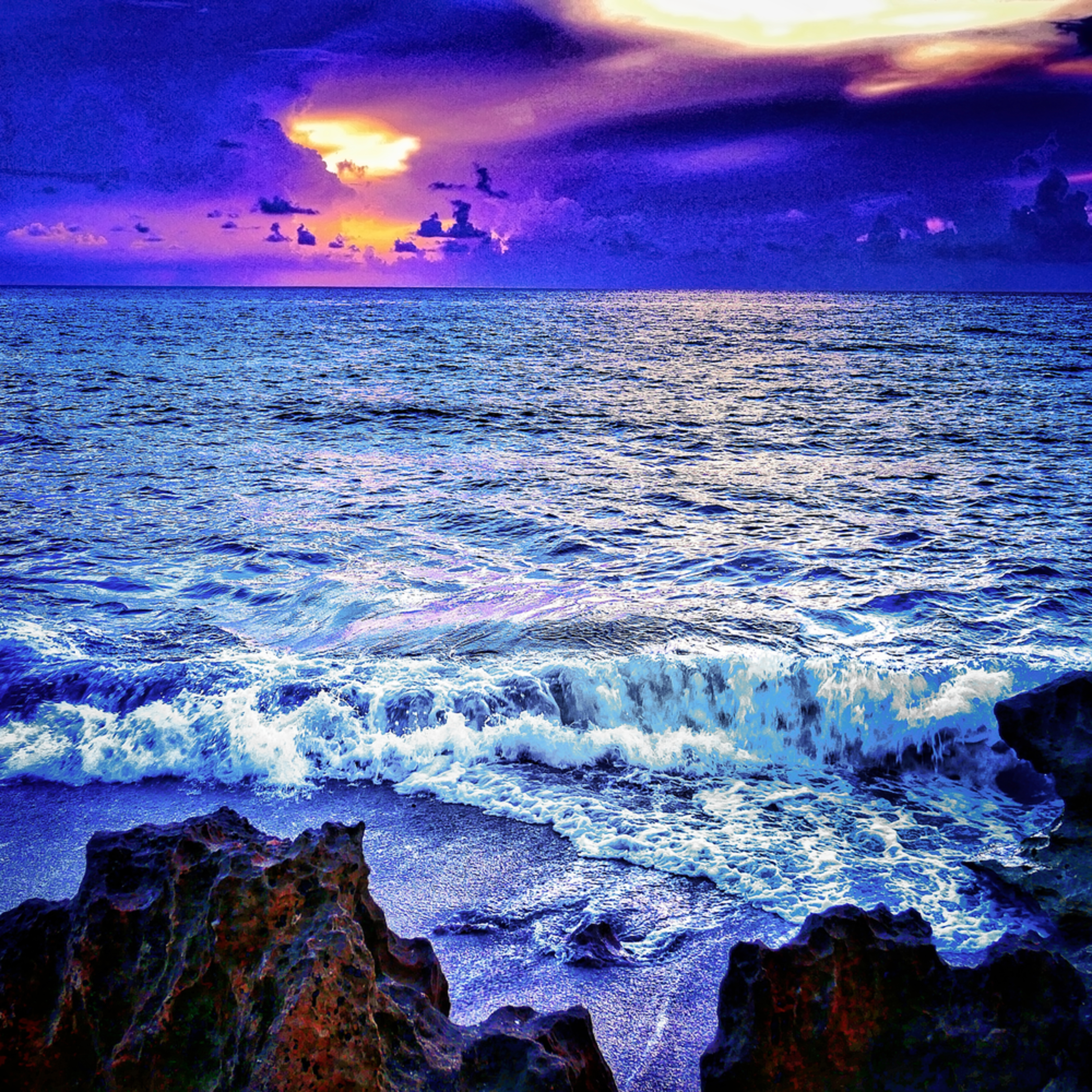 Purple sunrise mas2019 q7ytdn