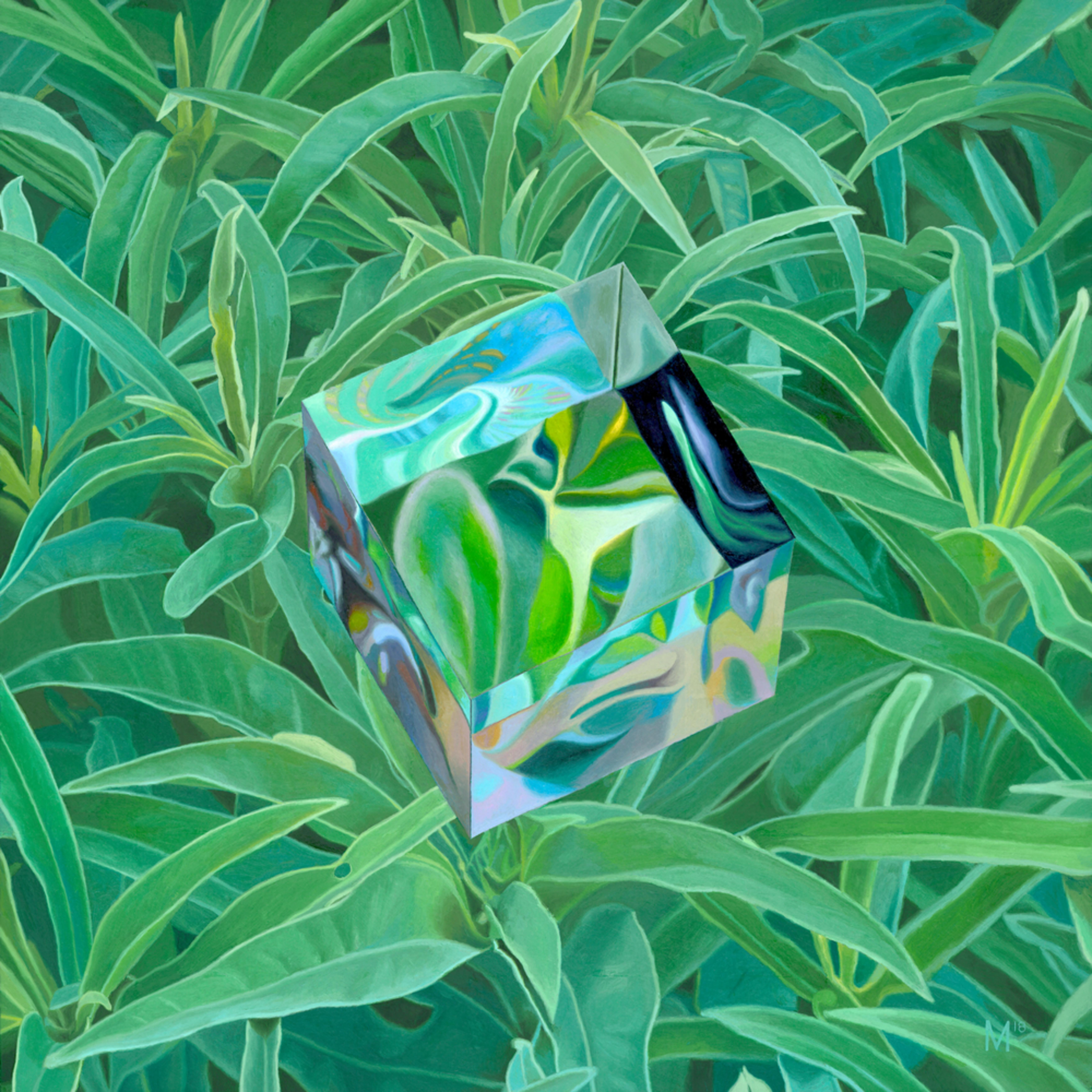 Cube clean bskszy
