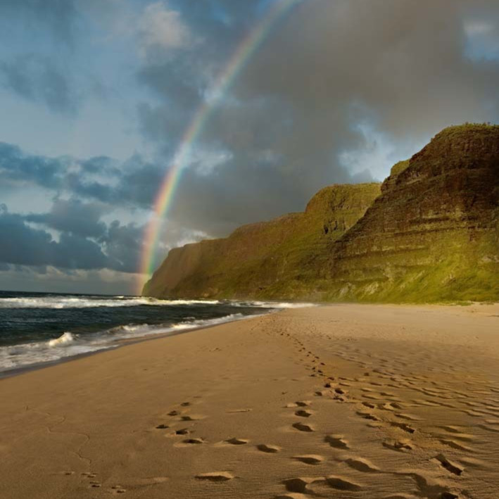 Polihale rainbow c6yjst