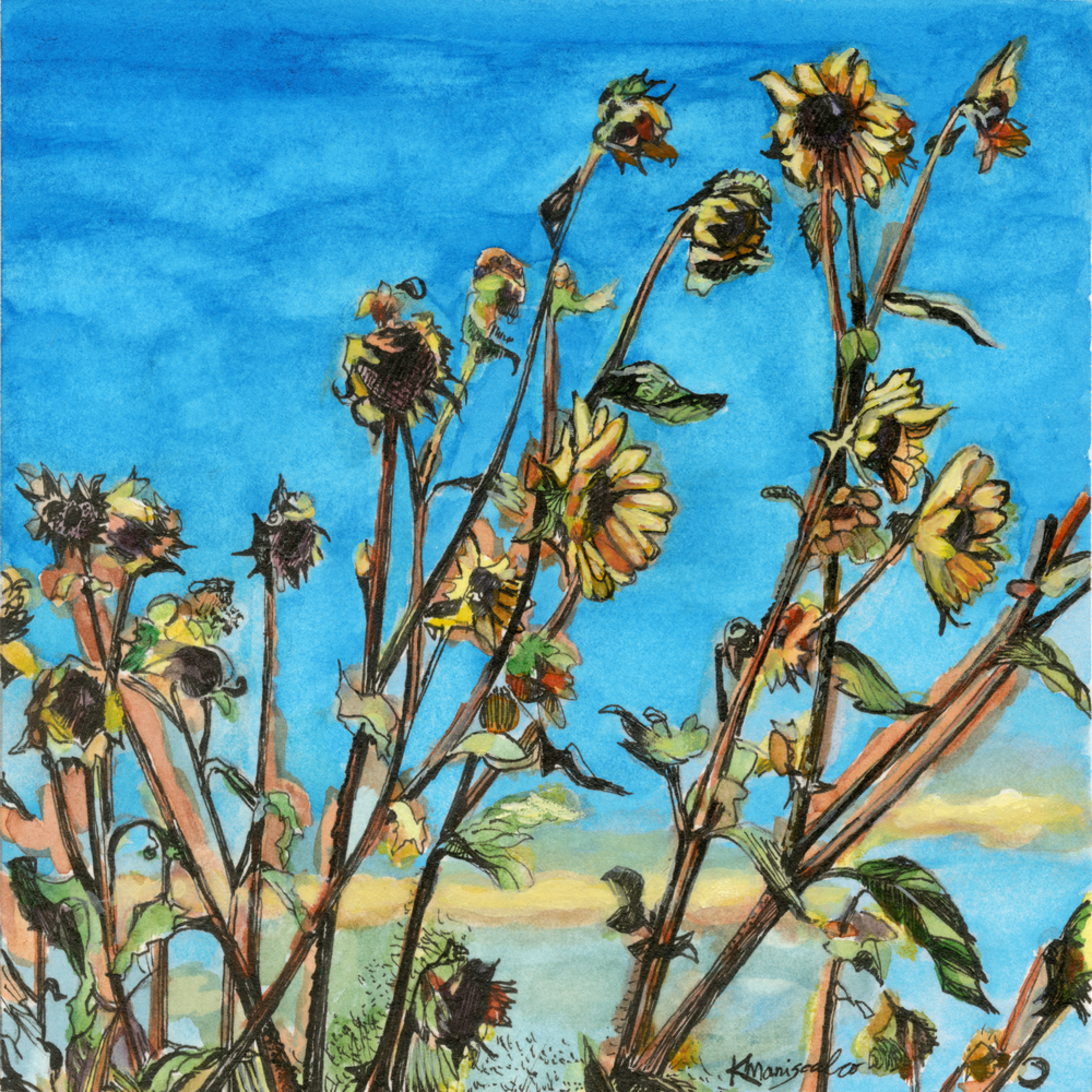 Santafesunflowers dvfbaz