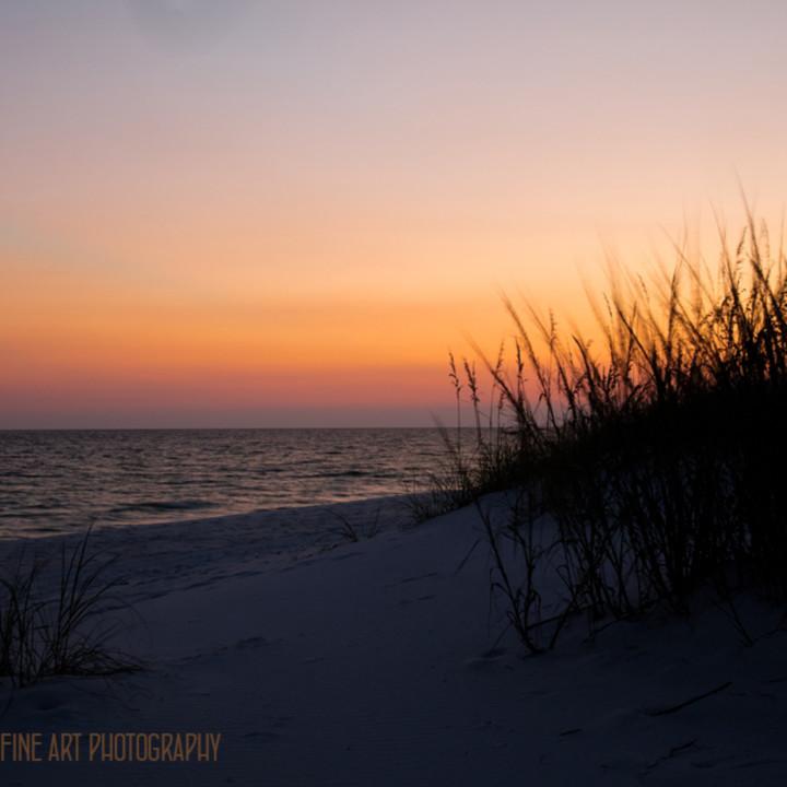 Sunsetonbeach 1224 fl koral martin vxykyp