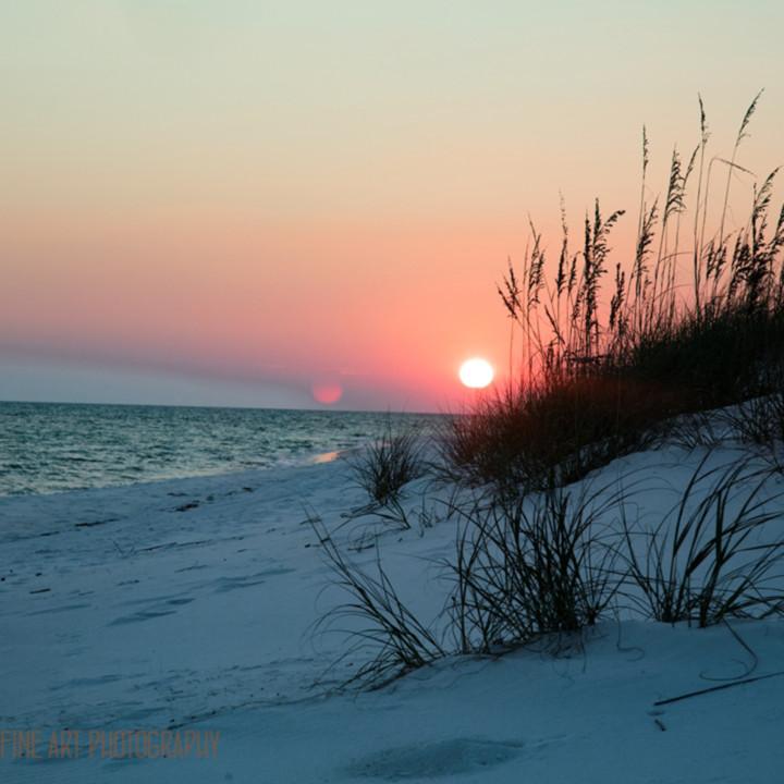Sunsetonbeach 1193 fl koral martin d3yx2r