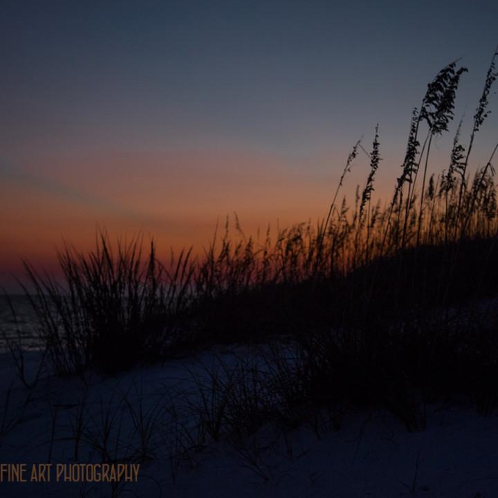 Sunsetonbeach 1231 fl koral martin vph9ue