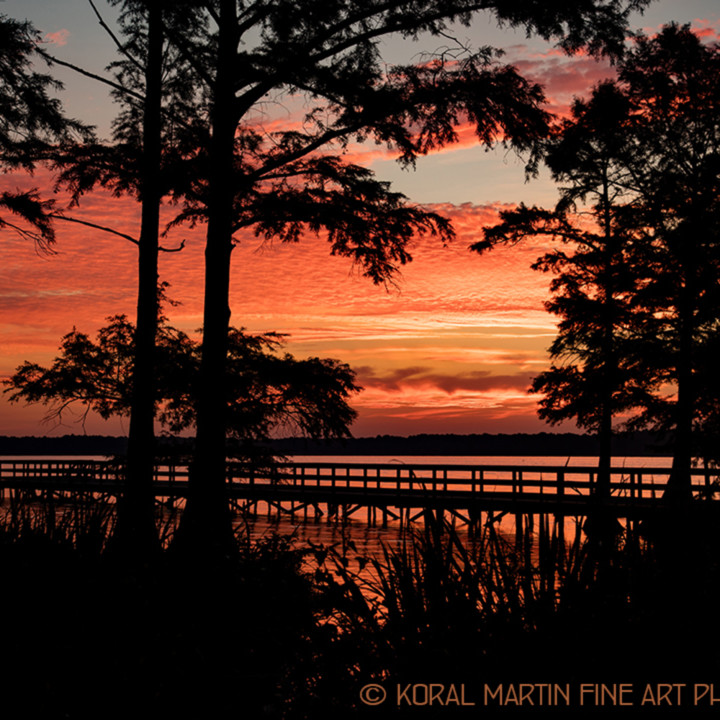 Sunrise dock reelfoot lake 1371 lf koral martin g3riho