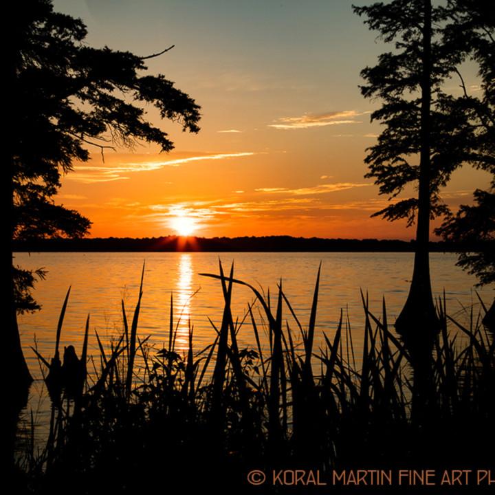 Sunrise reelfoot lake 1416 lf koral martin tilhif