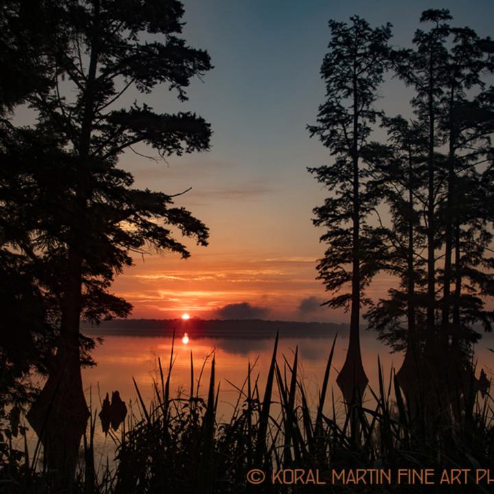 Sunrise reelfoot lake 0380 rltj18 lf koral martin u70zm9