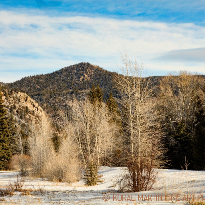 Colorado winter snow poudre canyon 9513 koral martin xkp8gh