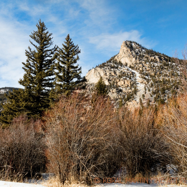 Colorado winter snow poudre canyon 9516 koral martin msiq2u