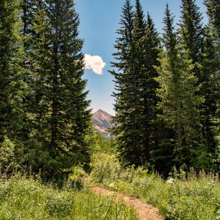 Snodgrass trail  mountains  7027 koral martin f1aefj