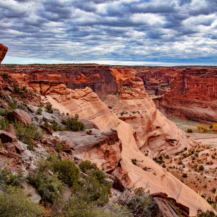 Canyon de chelly 3513 koral martin odcw0i