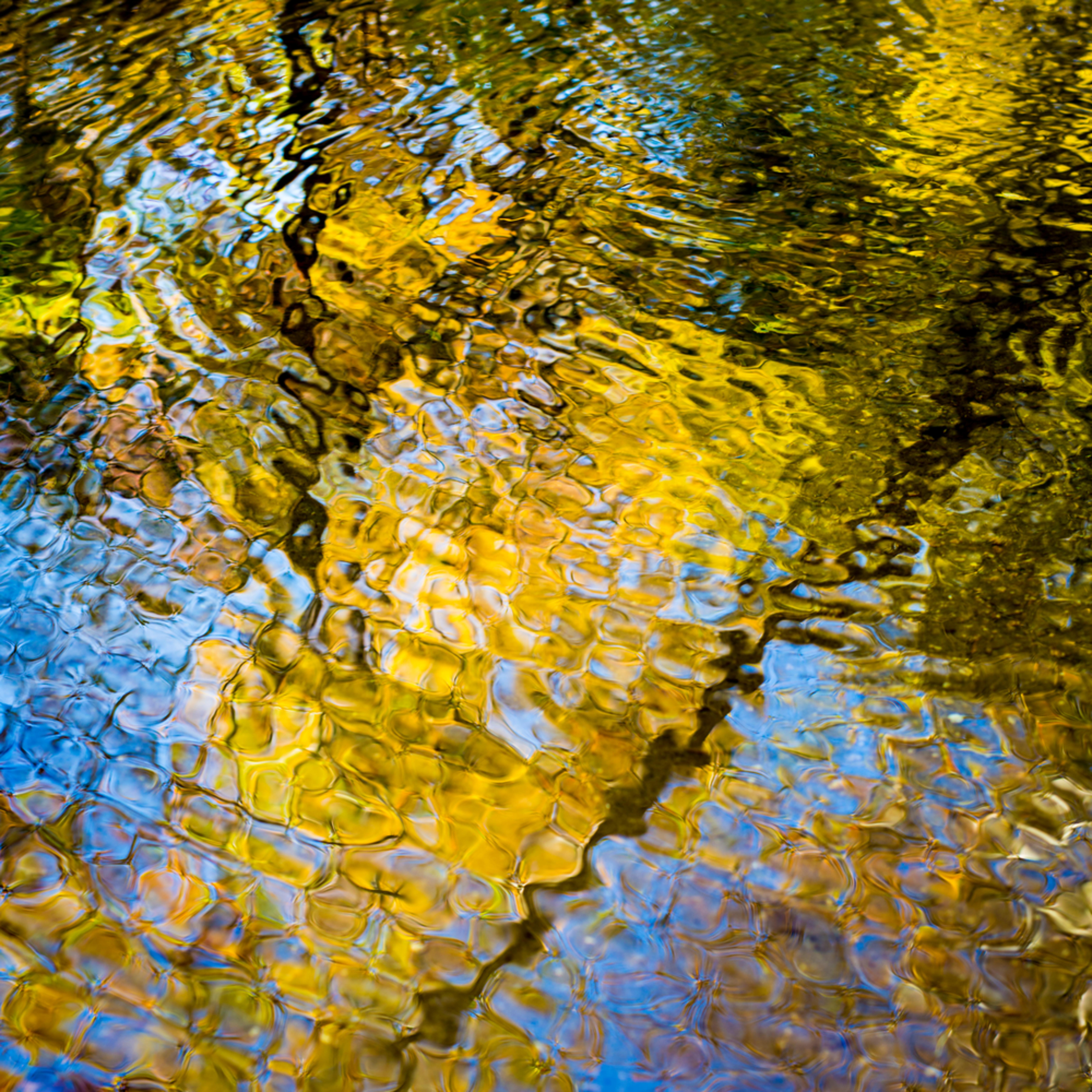 Autumn reflections p7iuuf