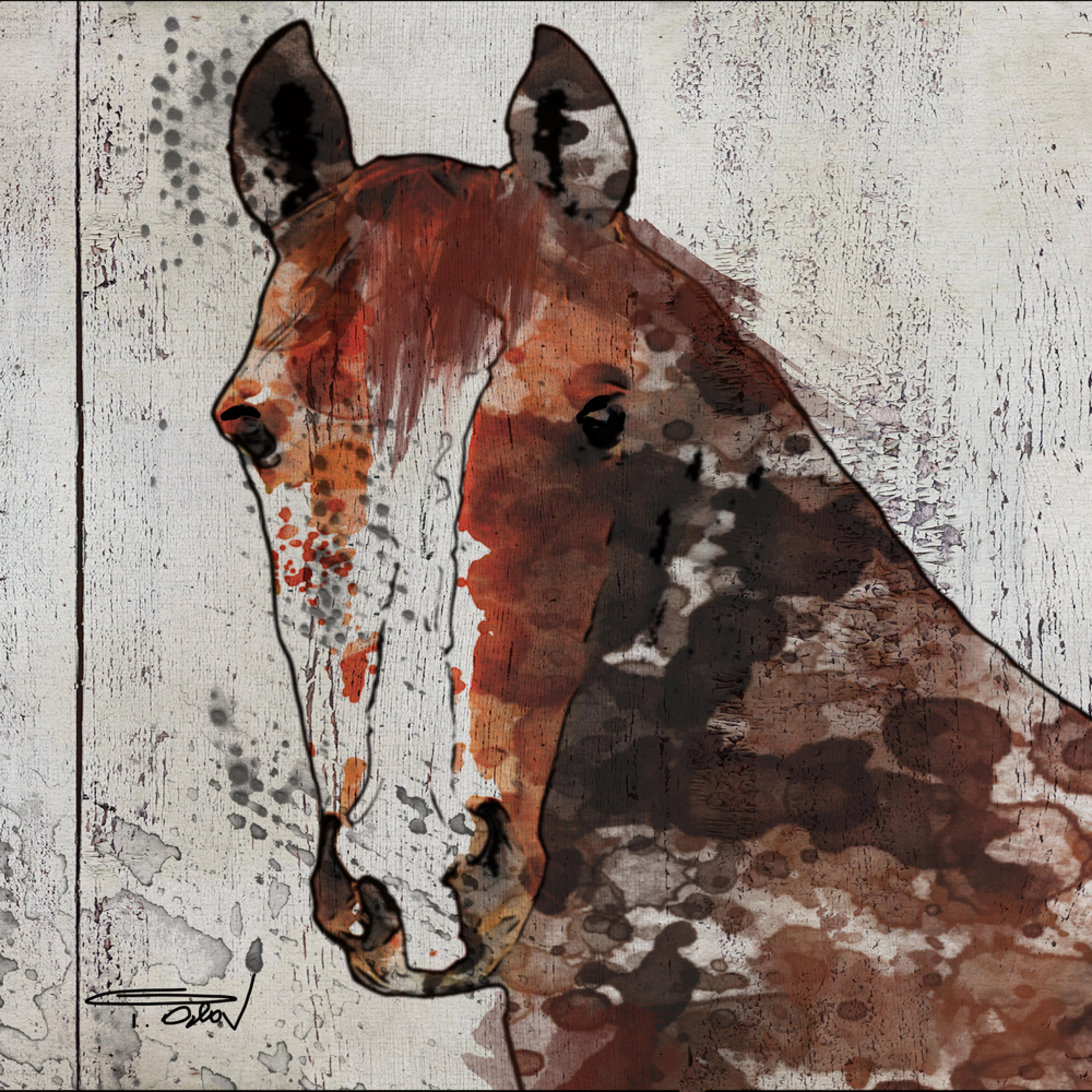 24 x 36 the brown horse 1 nzgzgz