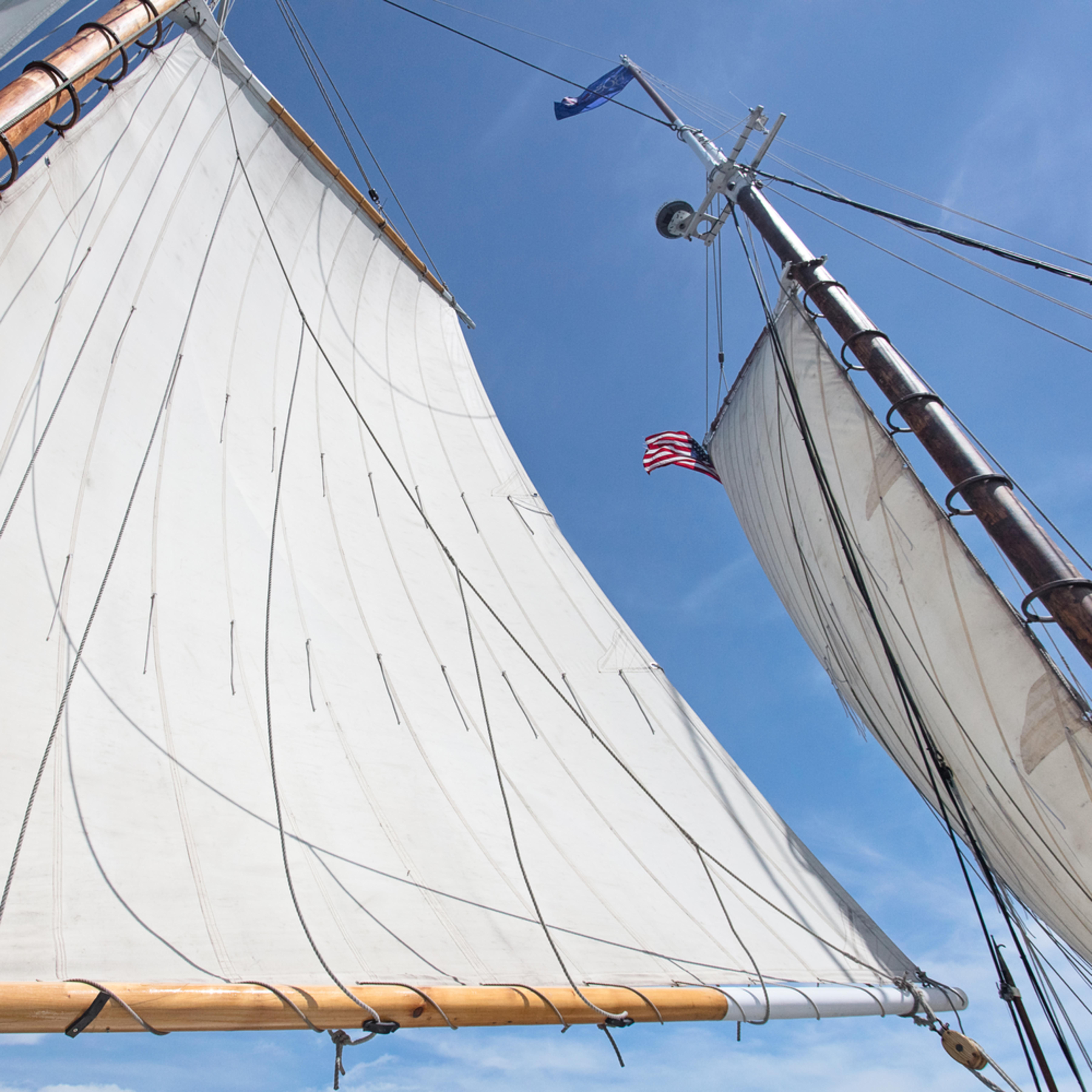 Ardelle schooner sails print isnaoi