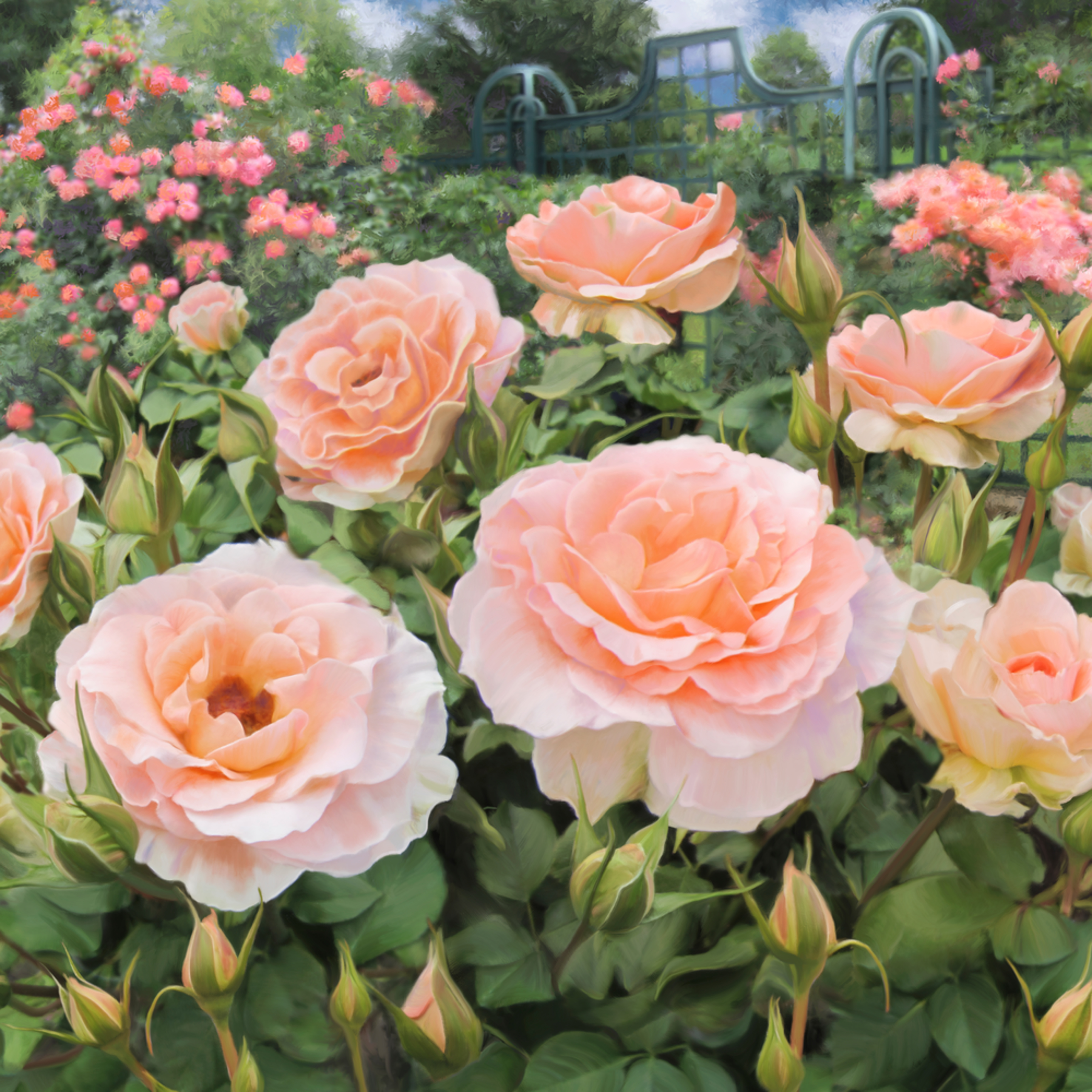 140102 ahern peggys rose garden 24x36x300 z8tqep