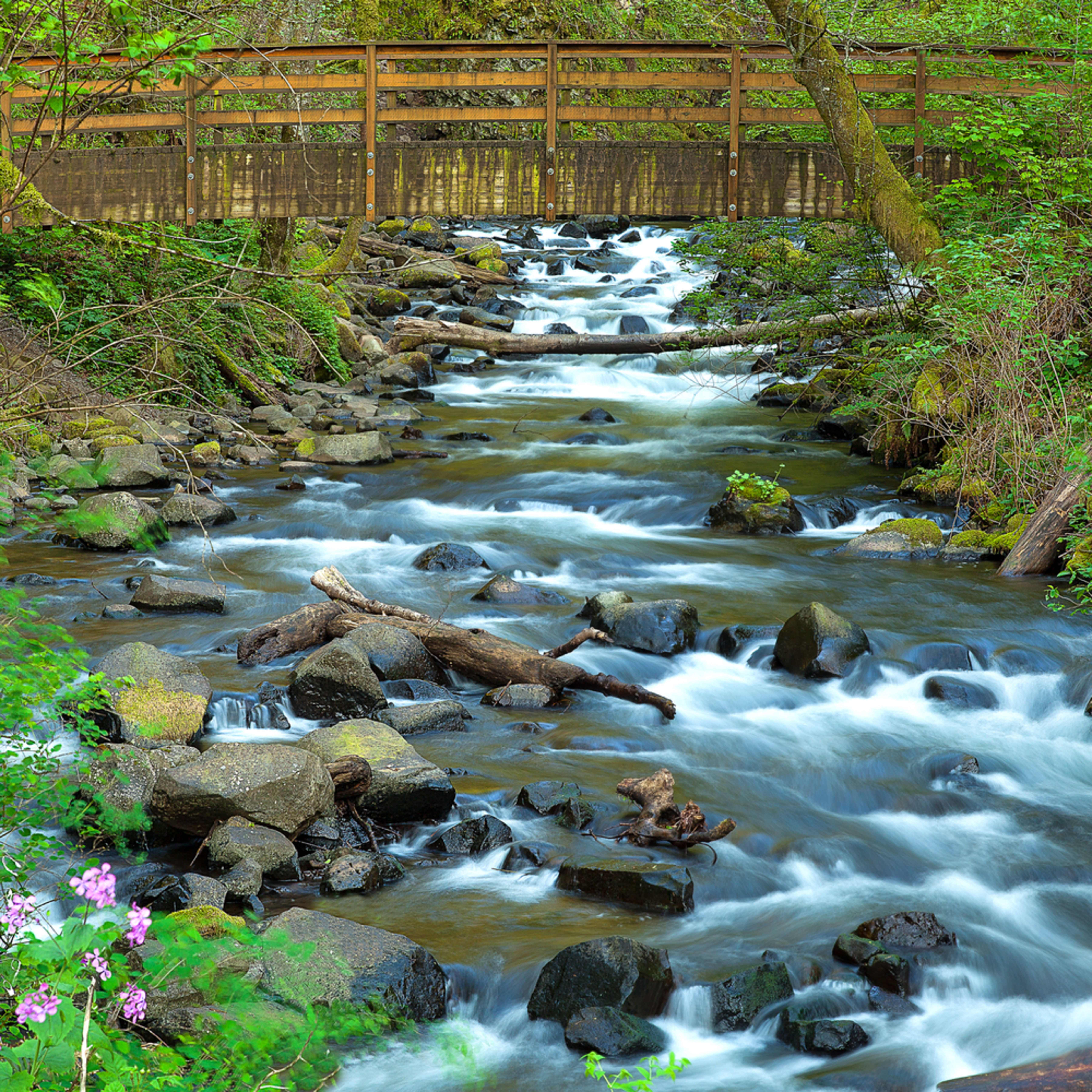 Bridge at bridal veil falls xexo2p