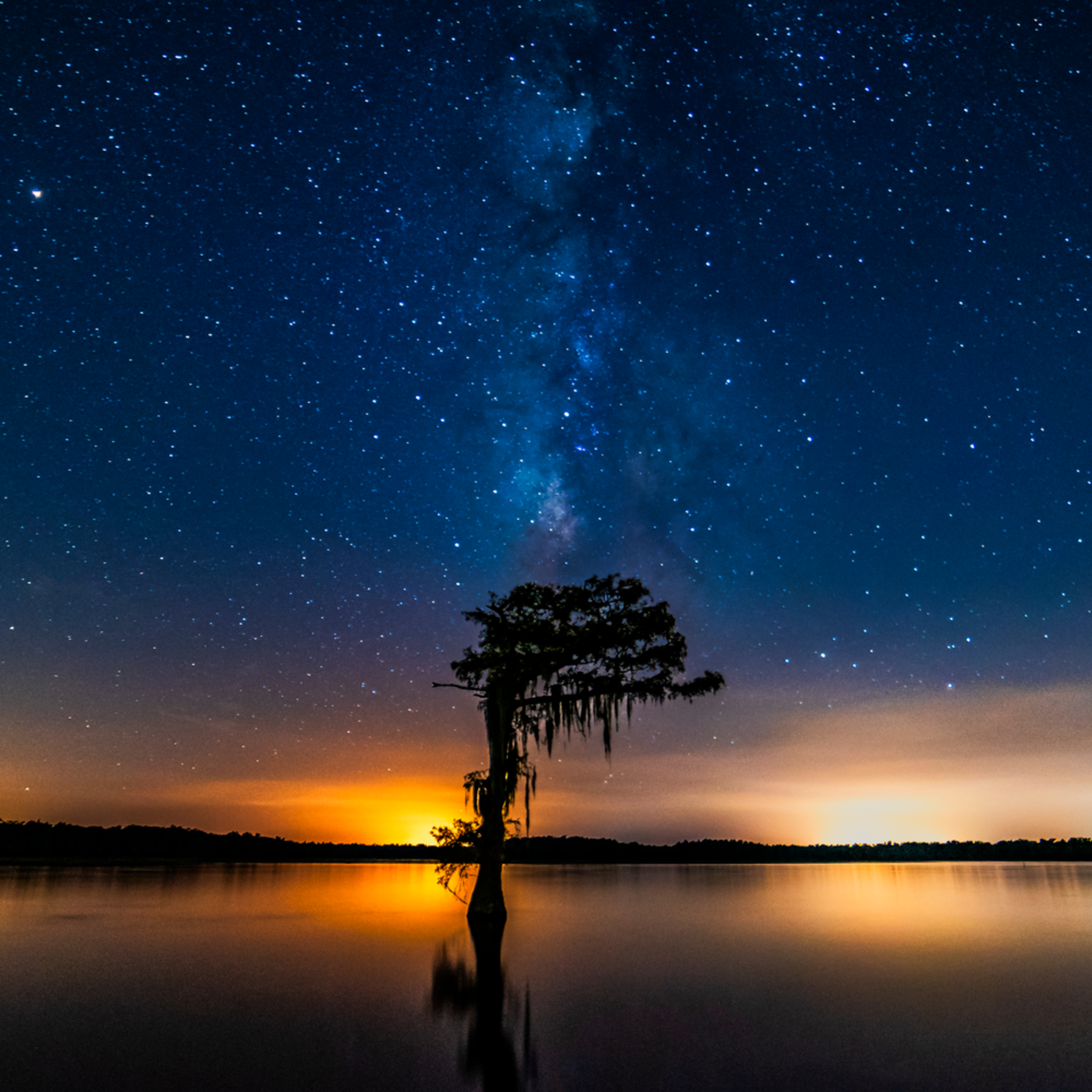 Andy crawford photography atchafalaya basin 003 kbxovt