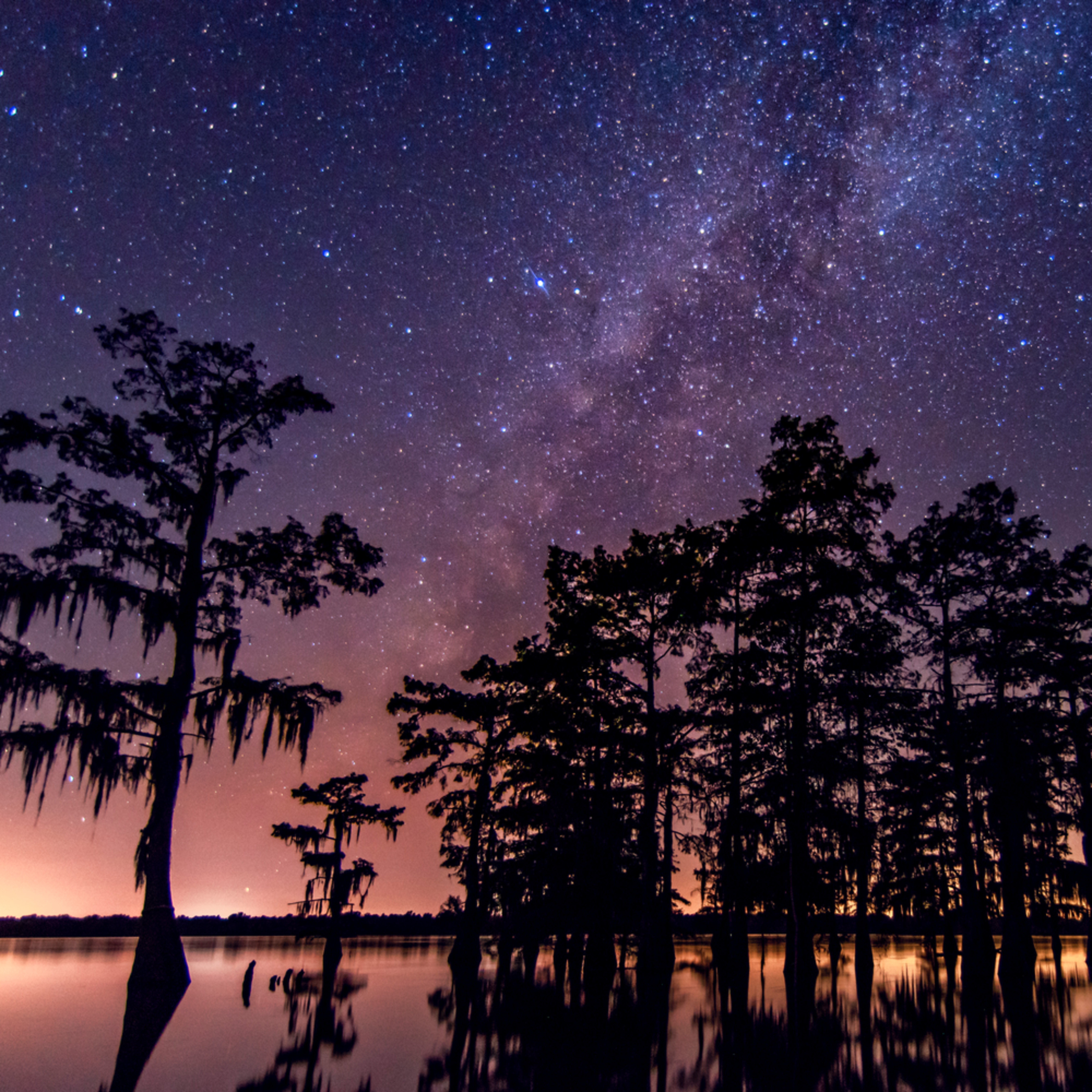 Andy crawford photography atchafalaya basin 005 elul5q