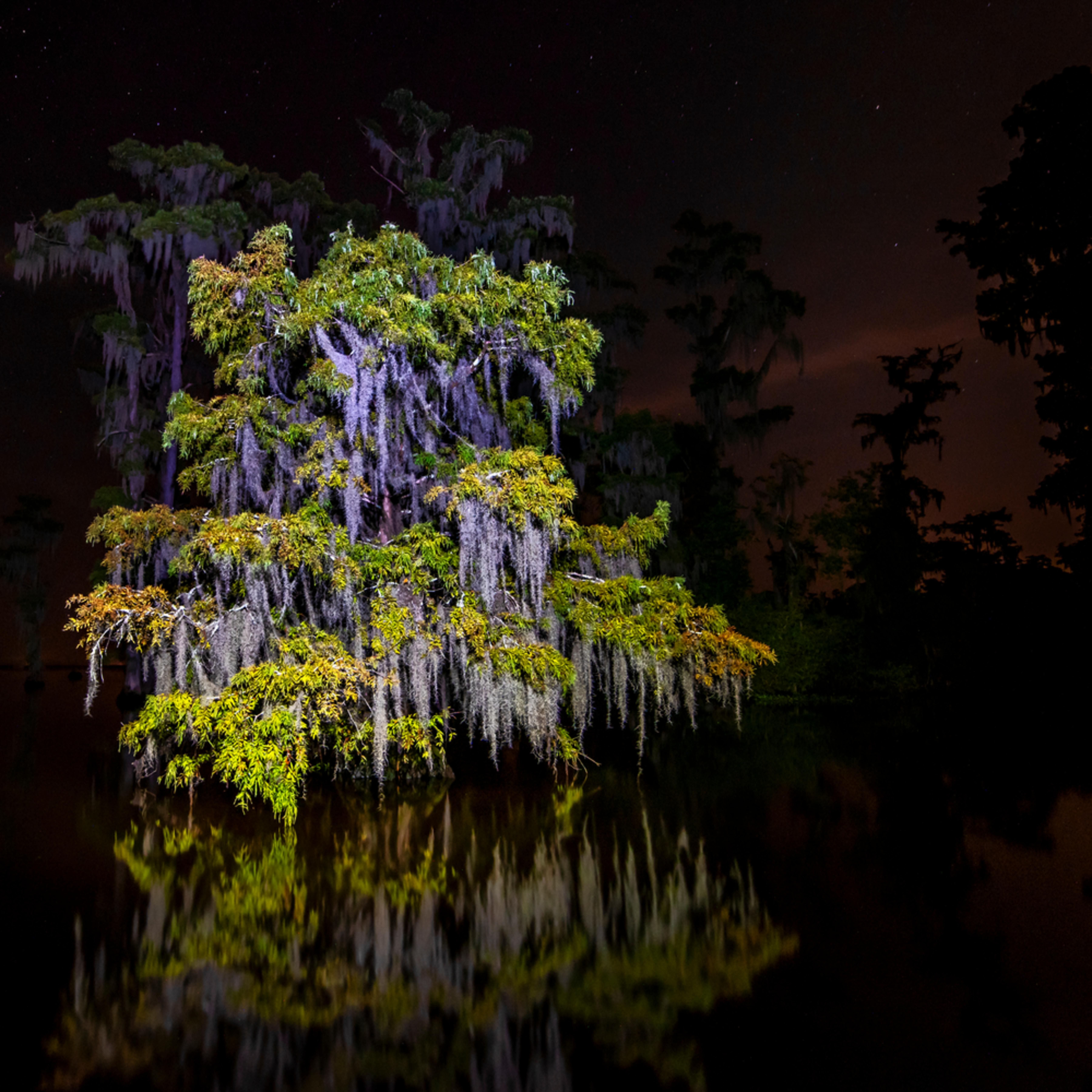 Andy crawford photography lake maurepas 003 q4dzub