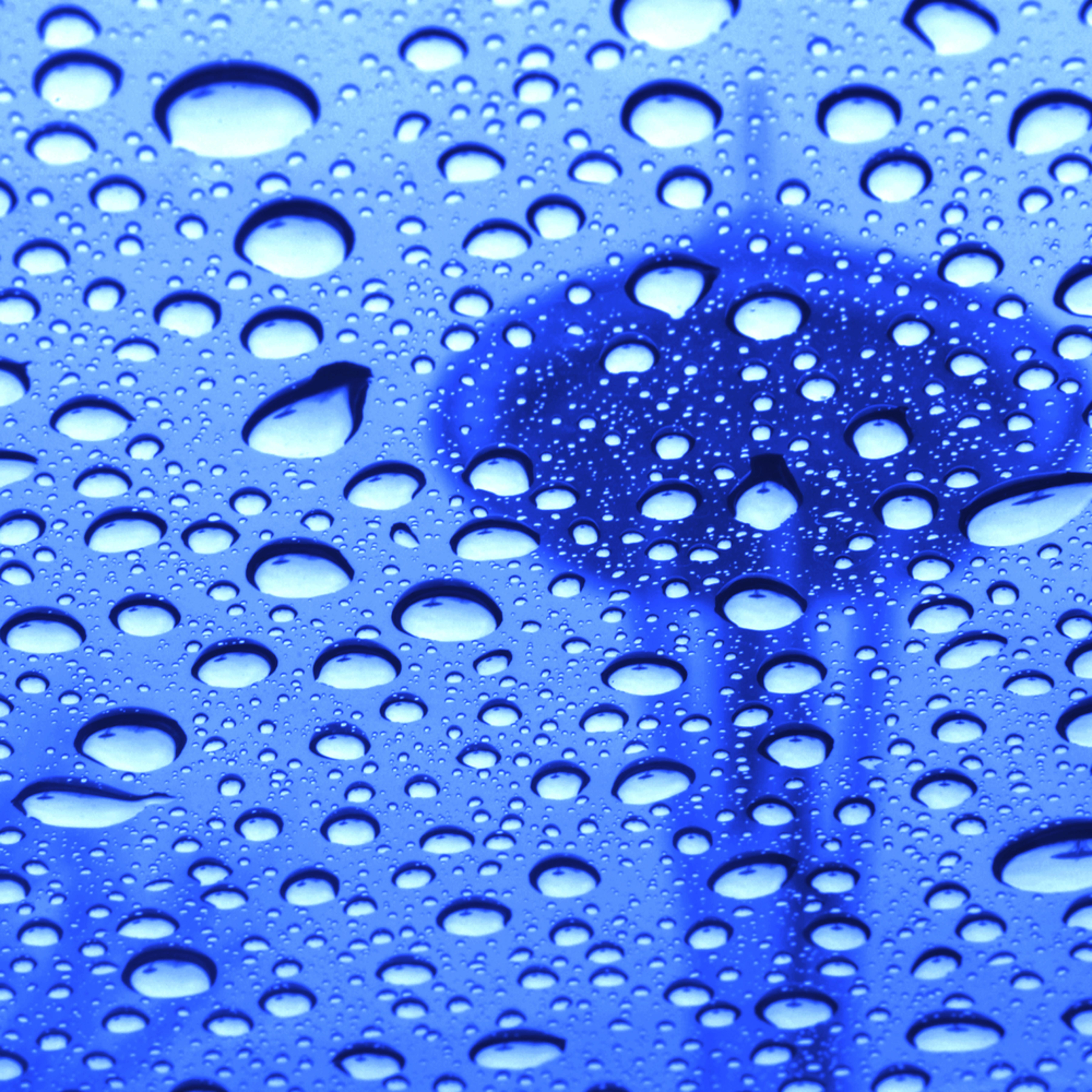 Rainyspaceneedle 20031202031hclx30x36 yzkj7n