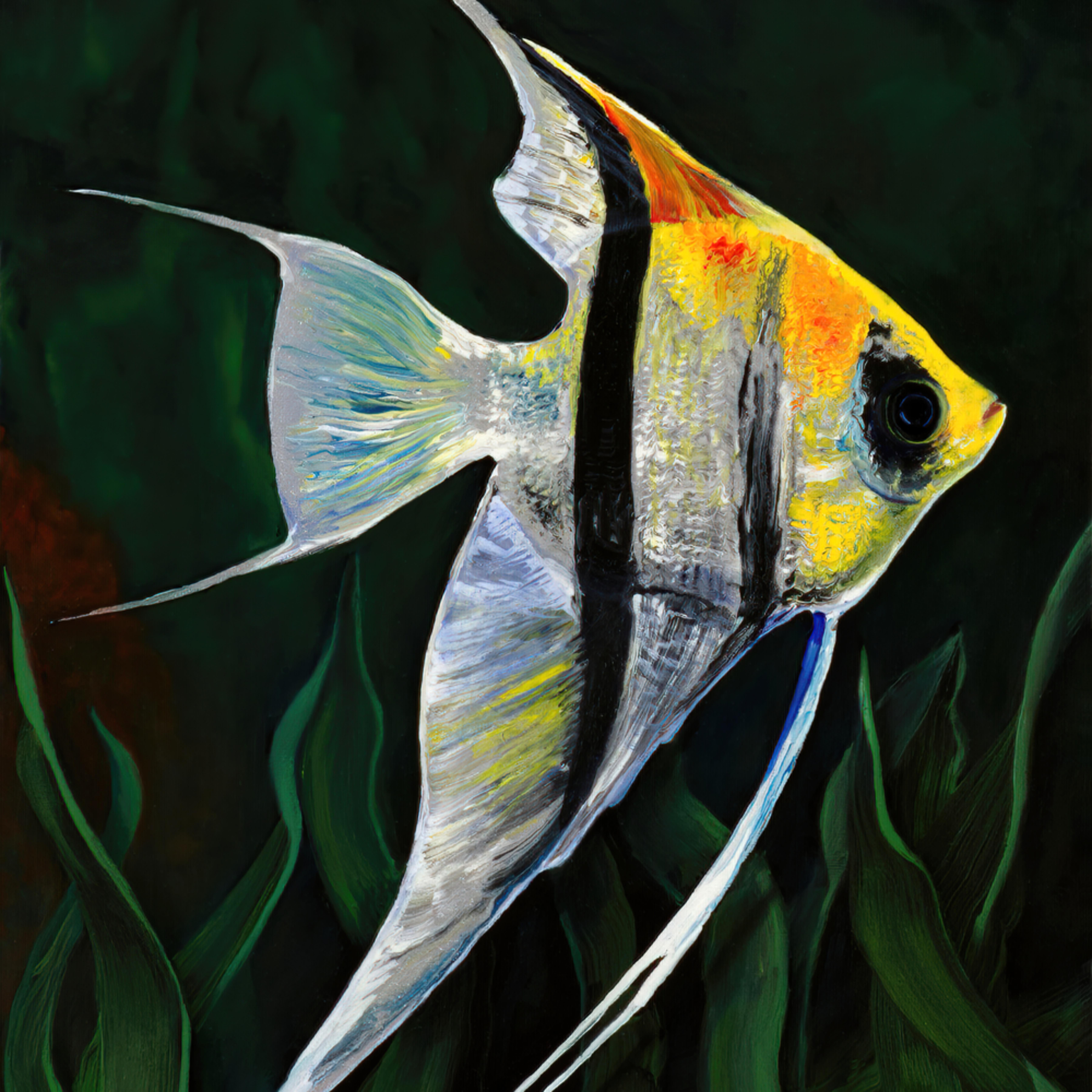 Angle fish sunnysideup print gplrmo