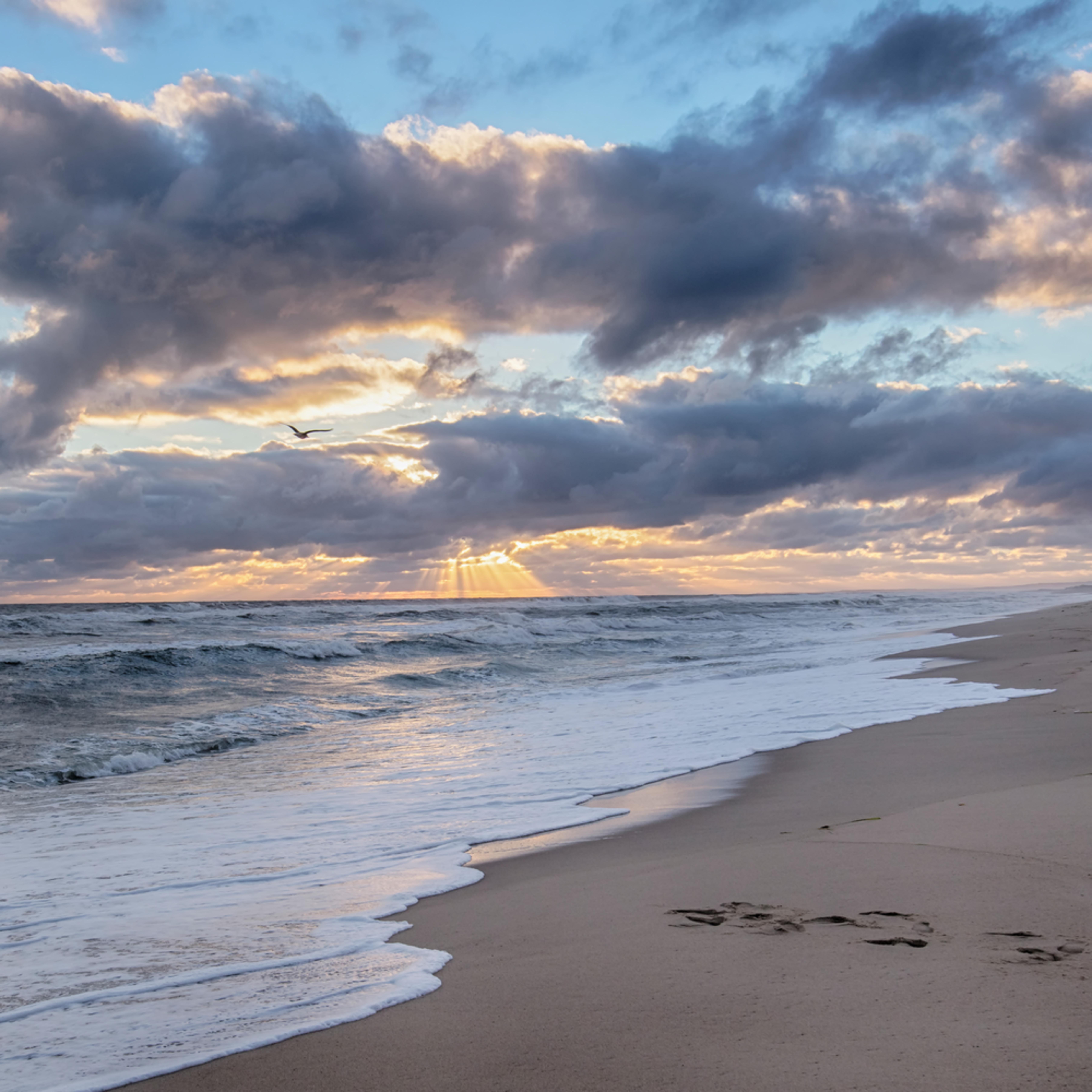 South beach sun beams wmc6h1
