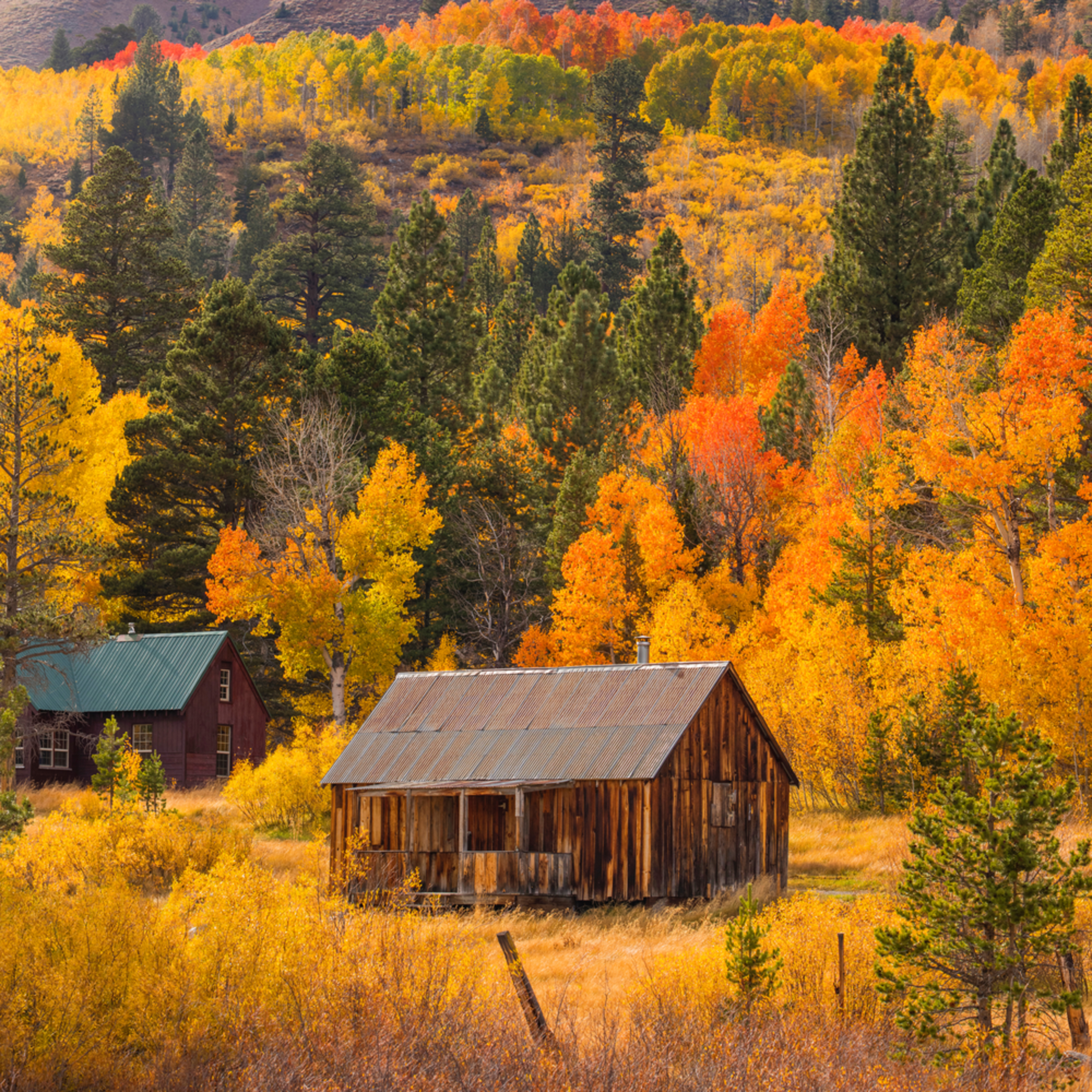 Hope valley cabin fall colors pano 60x36 for jack w4ap8n
