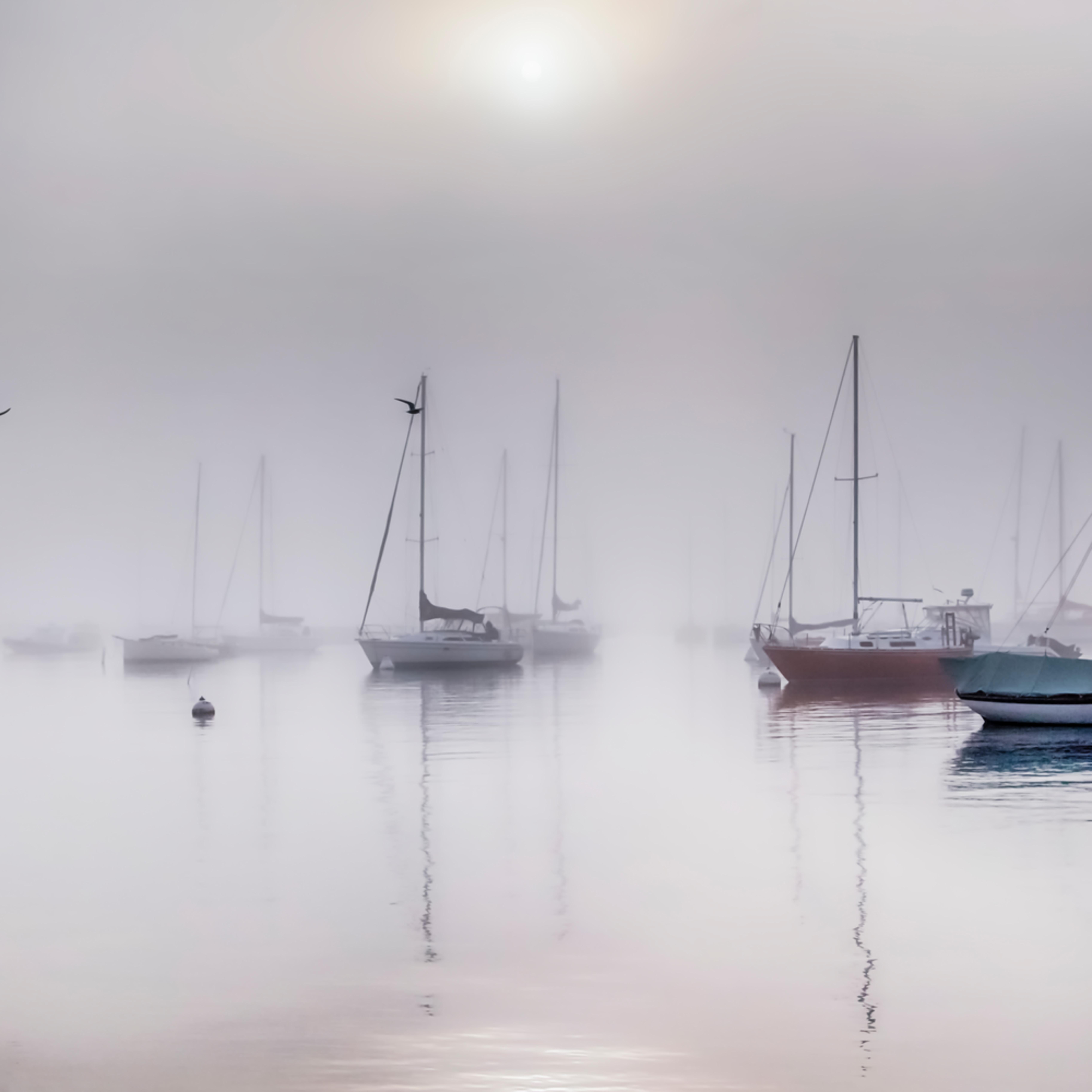 Vineyard haven harbor fog d2flmr