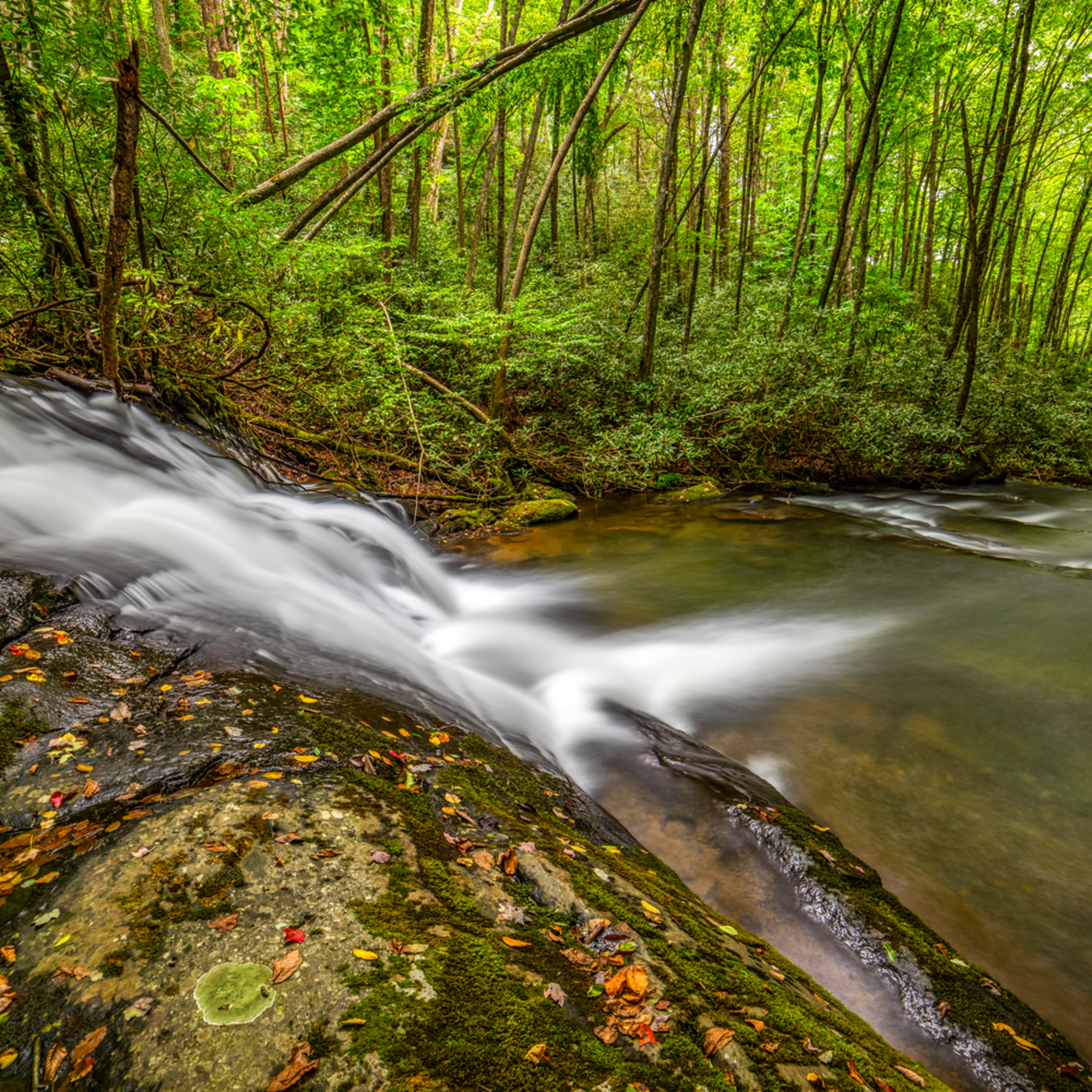Andy crawford photography tellico river 003 w78gb1