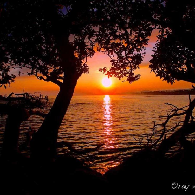 Sunrise of the heart smi8ul