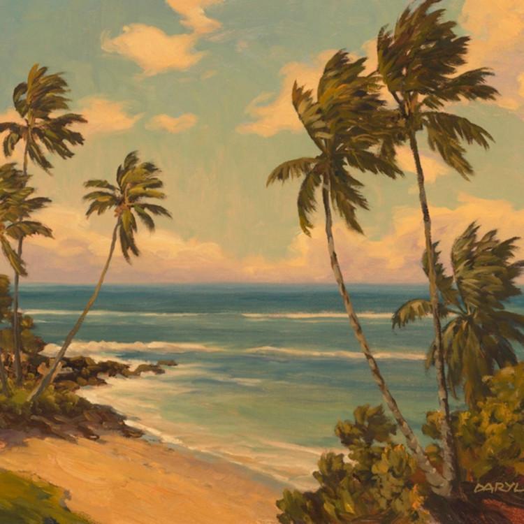 Hidden beach by daryl millard golb5s