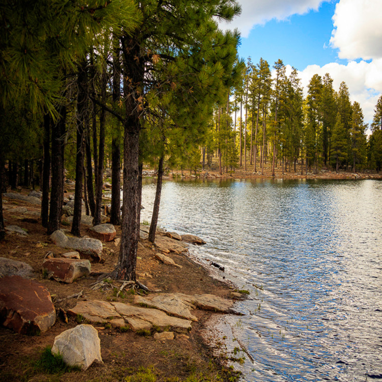 Woods canyon lake pano js2163 e6gdvc
