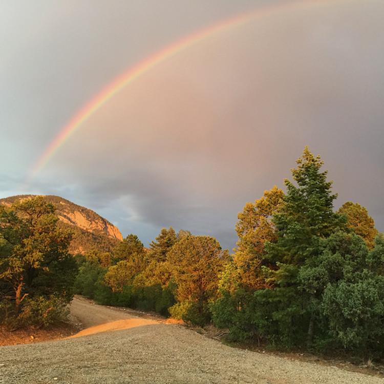 Under the rainbow wgs52n