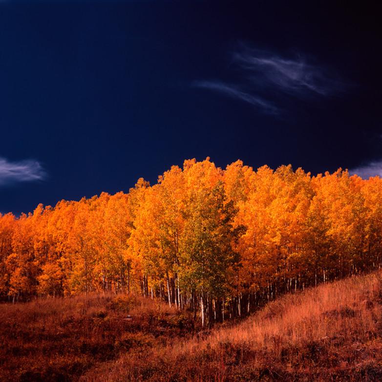 Aspen grove s2rxpf