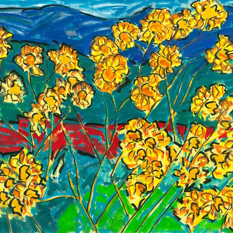 Maximillian sunflowers tqjdez