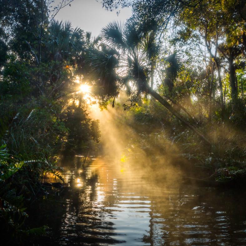 Early morning on baird creek  bhnuig