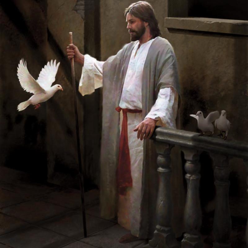 Doc christensen christ and the dove yyotqh