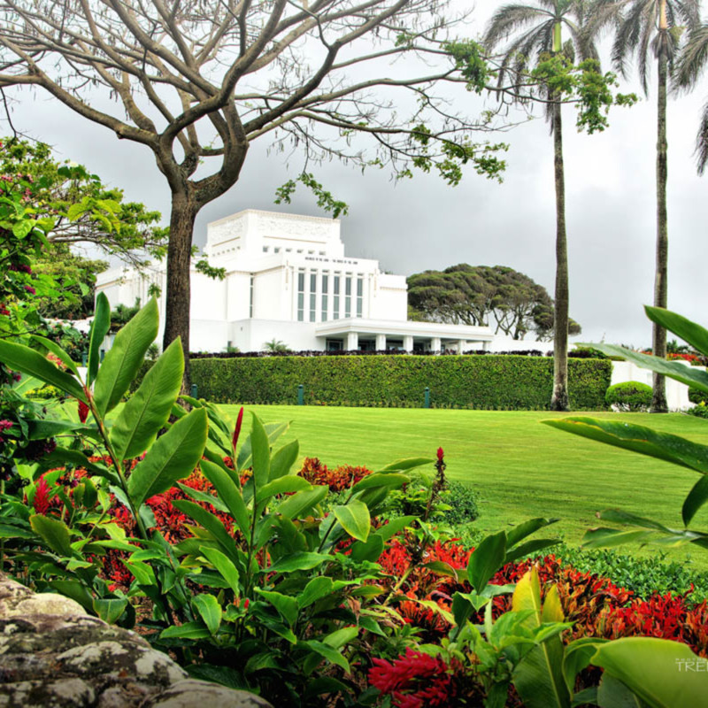 Trenton hill laie hawaii temple omvk1y