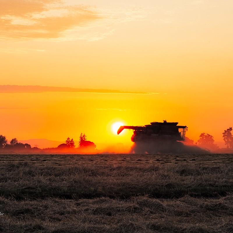 Farmland 2 wic9se