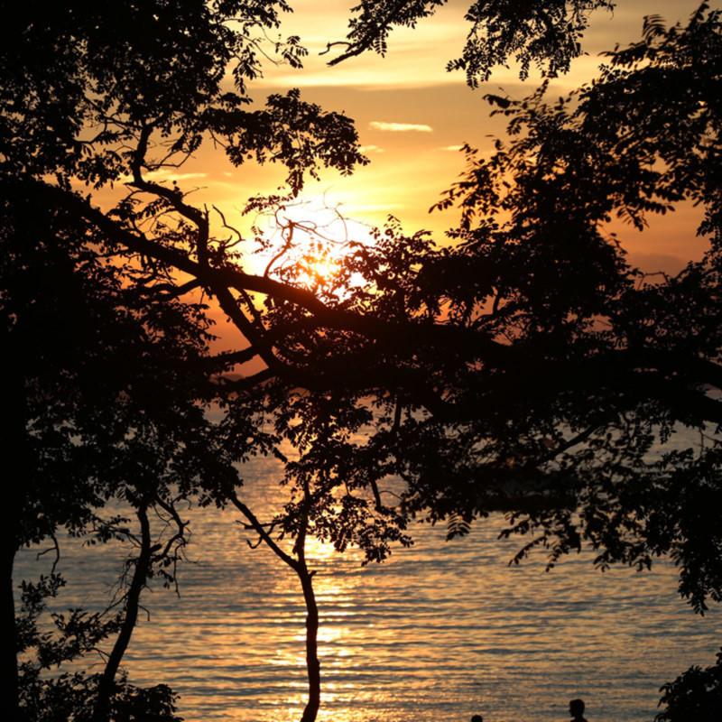 Sunset picnic ajyd5z