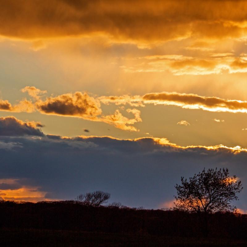 Golden sunset yeyod3