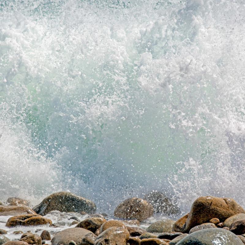 Seasplash t9ysrv