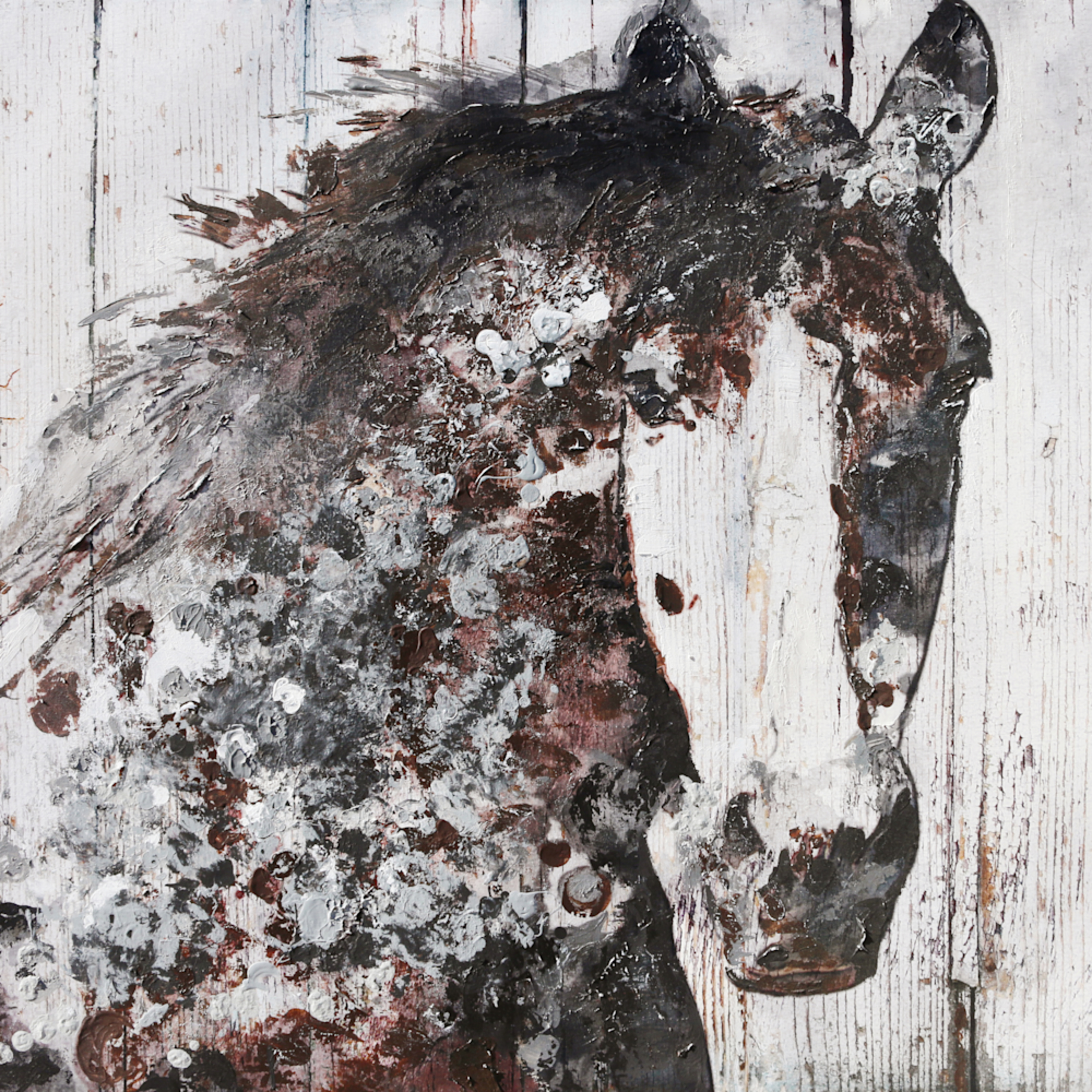40x60 gorgeous brown horse sixuxq