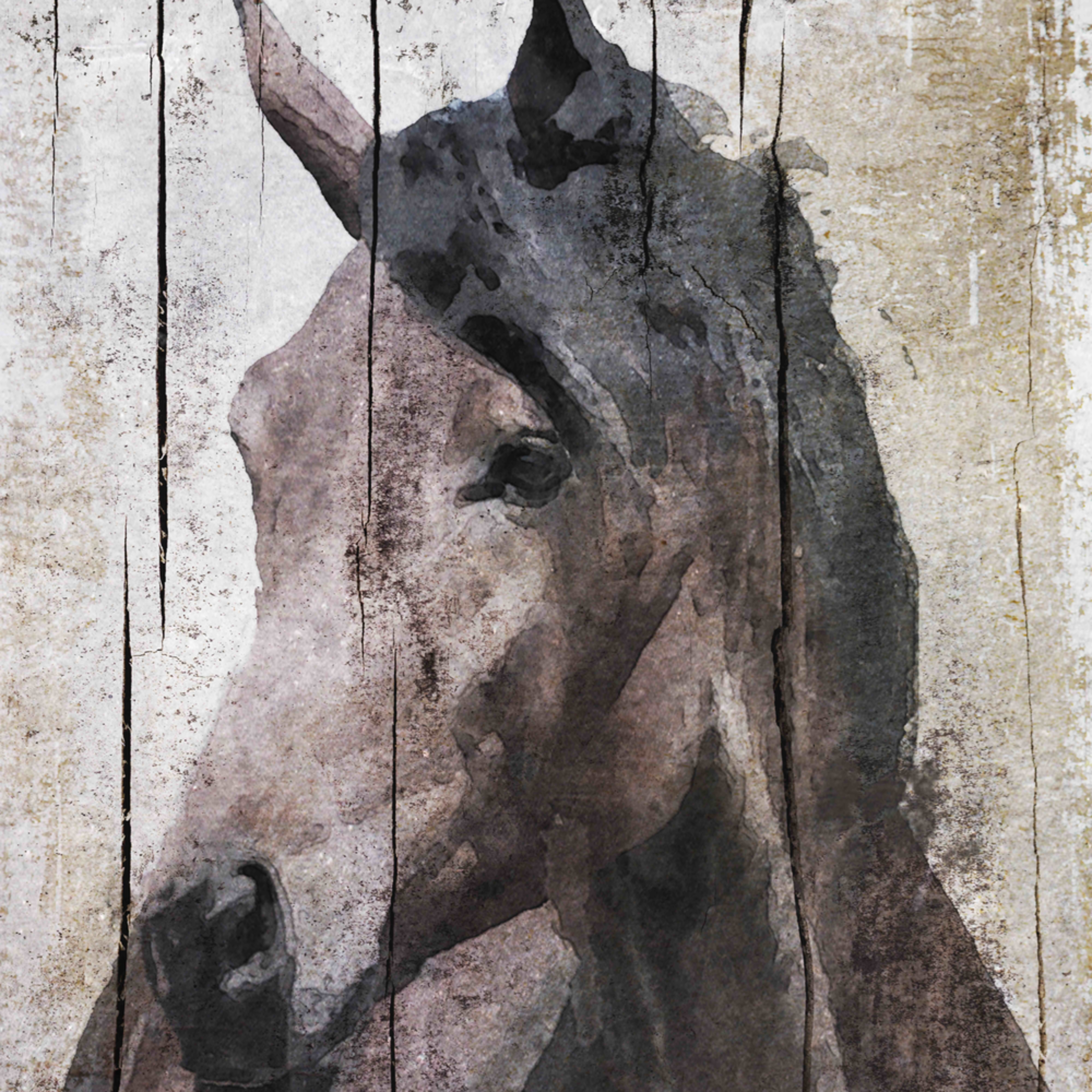 40x30 orl 2990 3 horse lemuse i2duvt
